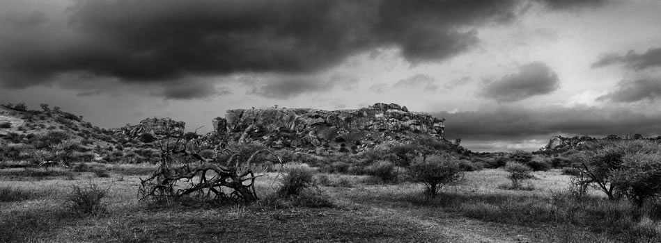 19. Mapungubwe koppie 'World Heritage site', The Place of the Jackal – Limpopo – 325 grams fiber fine art giclee archival print – 1/10