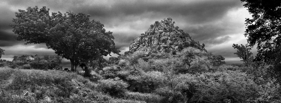 "15. Mopokai, ""The home of Martial Eagles"", Phalaborwa, Limpopo – 325 grams fiber fine art giclee archival print – 1/10"